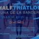 Half Triatlon Cuna de la Bandera Rosario