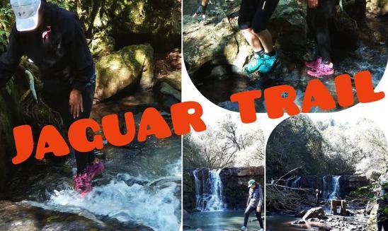 Jaguar Trail Eldorado