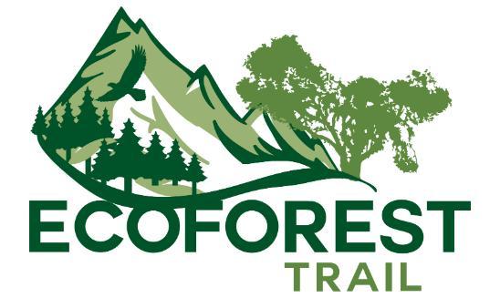 Ecoforest Trail Desafio La Ernestina